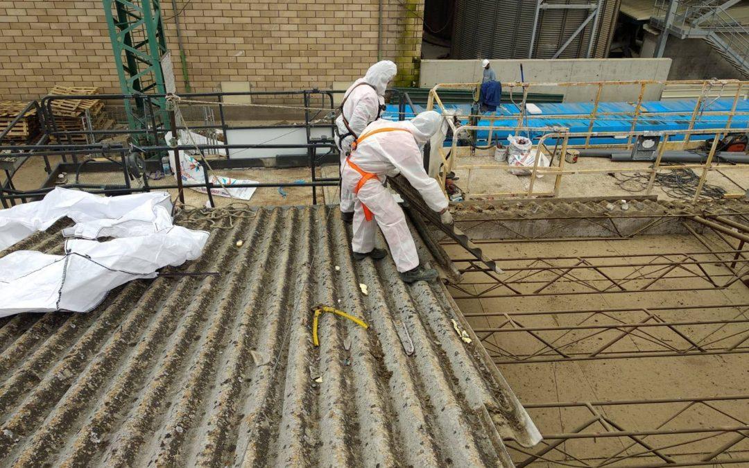 Continúan los trabajos de desamiantado en la fábrica de Copasa, Salamanca.