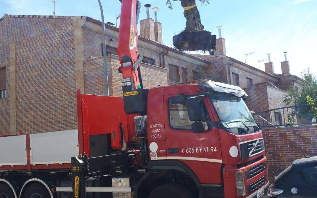 Trabajos en altura con grúas y todo tipo de transportes en Salamanca